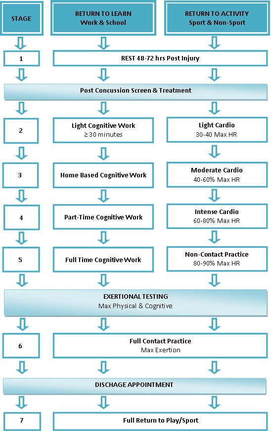 Concussion flow chart by Collegiate Sports Medicine